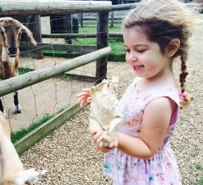 4 year olds - Charlotte Aliyeva
